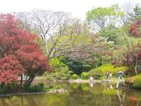 有栖川公園.jpg