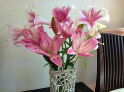 flower9.jpg