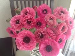 flower41.JPG