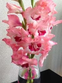 flower56.JPG