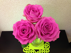 flower60.jpg