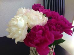 flower68.jpg