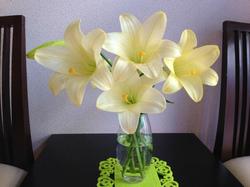 flower73.jpg