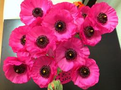 flower80.jpg