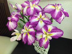flower87.jpg