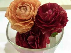 flower91.jpg