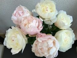 flower93.jpg