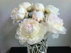 flower103.jpg