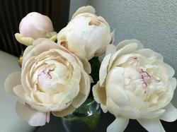 flower113.jpg