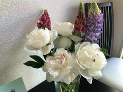 flower116.jpg
