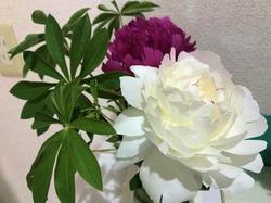 flower124.jpg